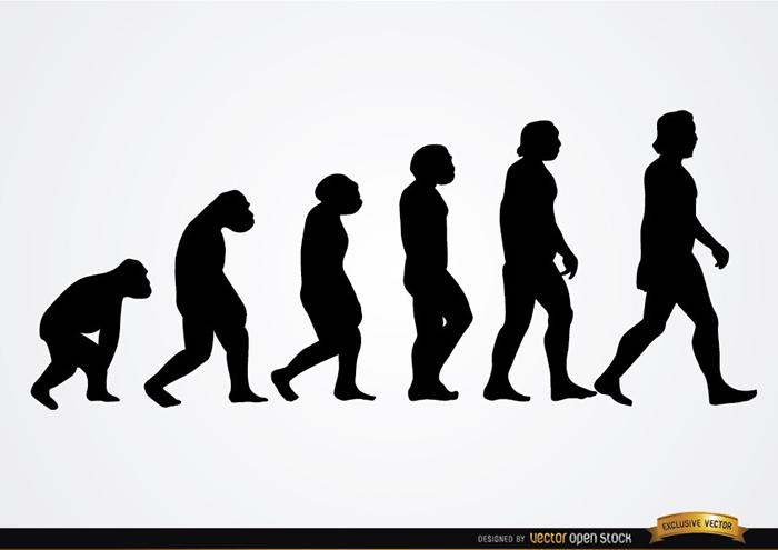 ecvolution