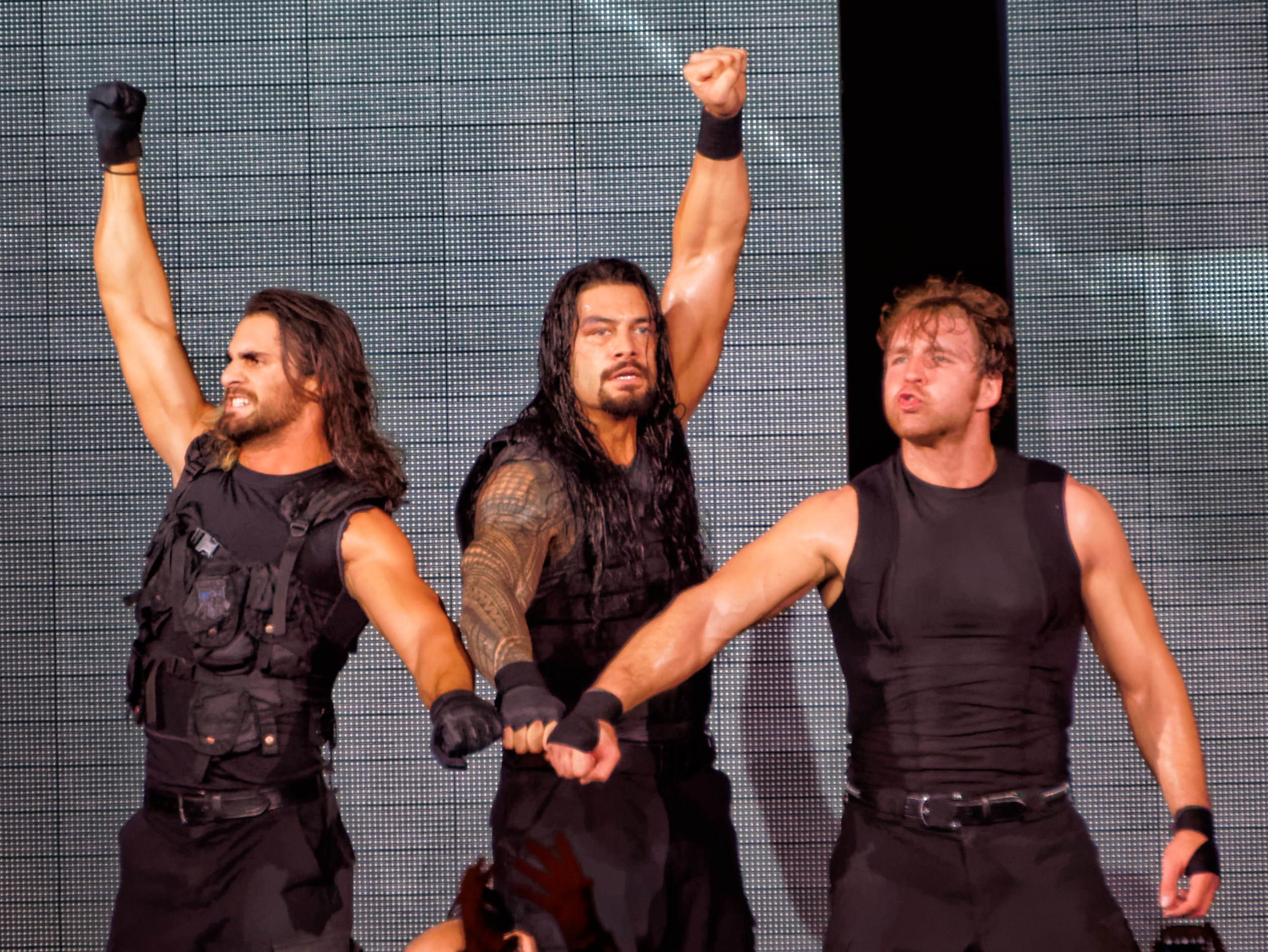 The_Shield's_fist_pose